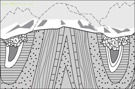 Схема строения равнины