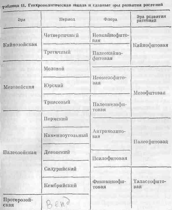 Эры и периоды характеристика