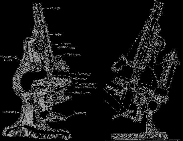 Микроскоп и ход лучей в